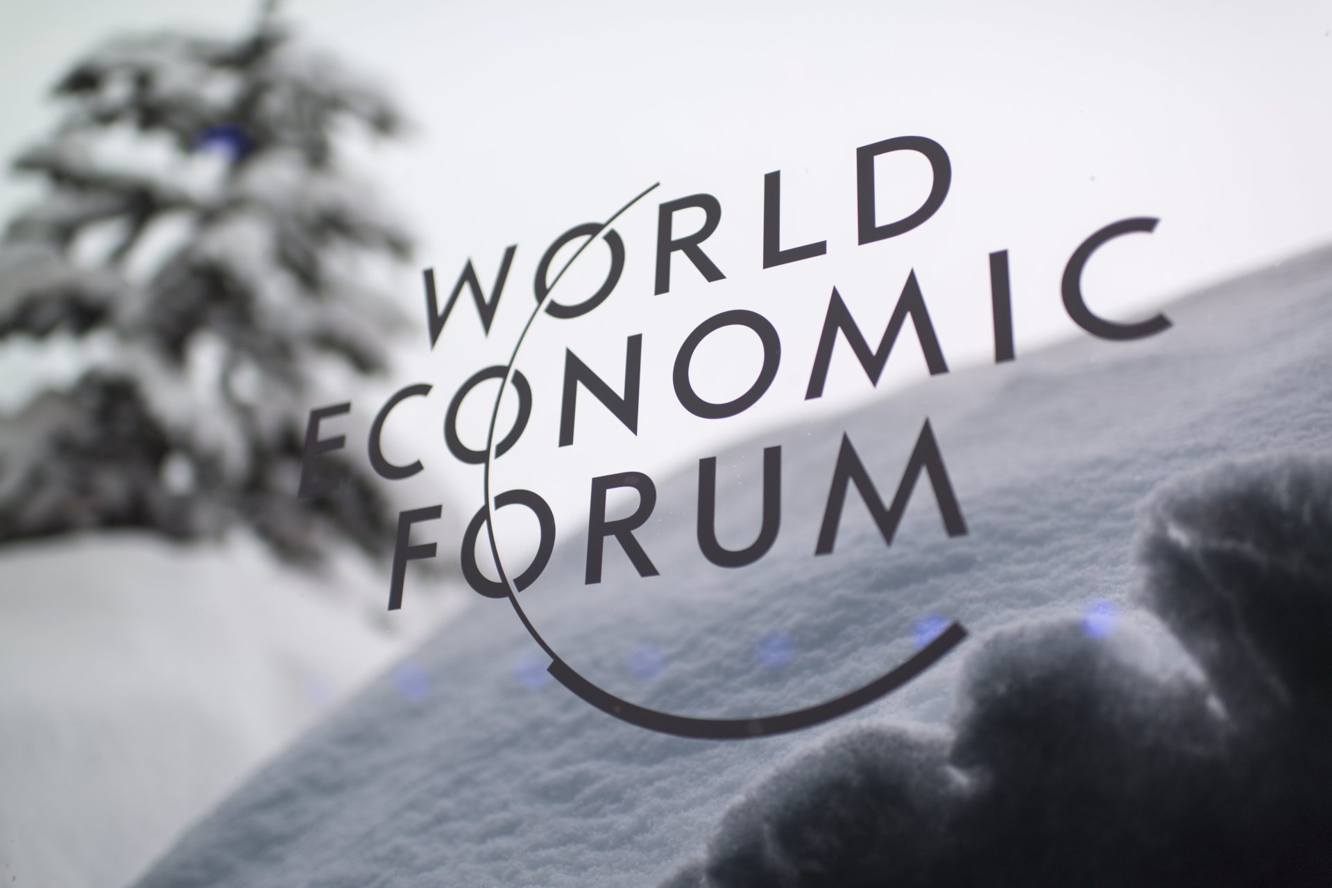 Informe Global de Riesgos 2019, WEF